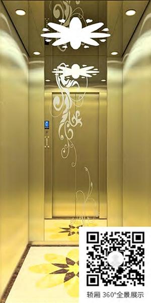 别墅电梯A-520(选配)