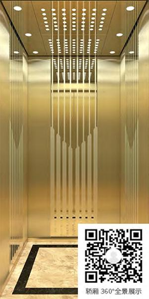 别墅电梯A-521(选配)