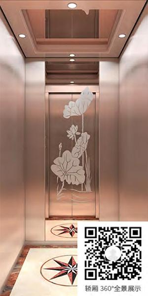 别墅电梯Z-618(选配)