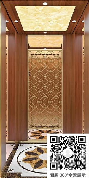别墅电梯M-717(选配)