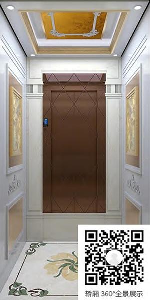 别墅电梯H-818