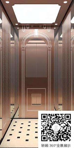 别墅电梯H-820